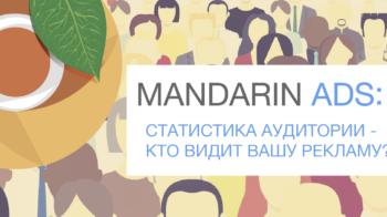 Статистика о сети Mandarin ADS: кто же видит вашу рекламу?